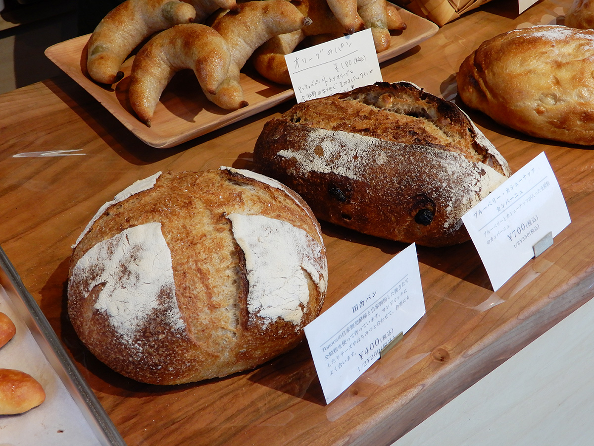 のぼの職人村のパン屋 土の香 オリーブのパンと田舎パン、カンパーニュ
