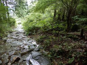 熊野古道 馬越峠登口