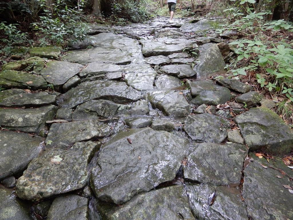 熊野古道 馬越峠登口の石畳